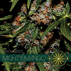 Mighty Mango Bud Feminised (упаковка 3 шт)